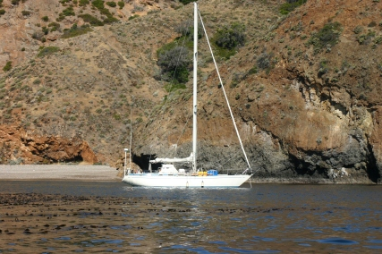 img_3972-anthea-anchored